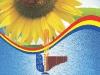 CJCPCTI - Brosura Floare Pagina 28