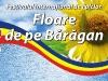 CJCPCTI - Fundal scena - Festival Floare de pe Baragan