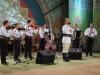 Festivalul Albesteanu 2008